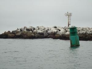Morro Bay North Jetty and entrance buoy