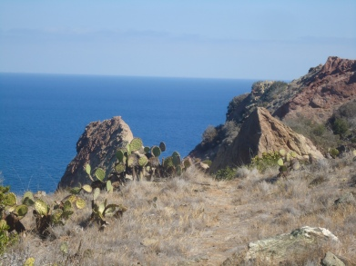 Hiking from Ripper's Cove
