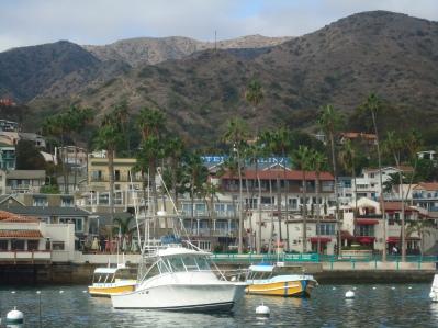 Avalon Bay