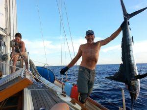 Peter's Marlin