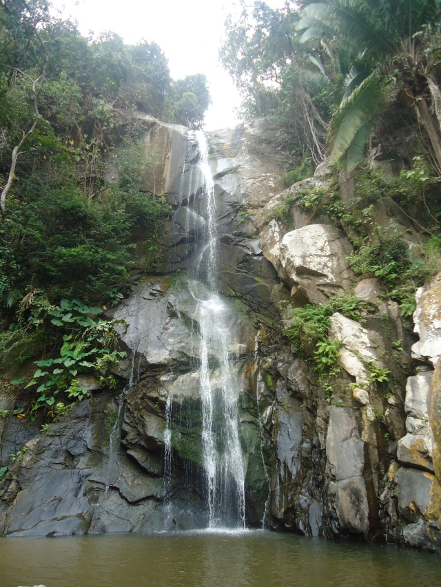The Cascada