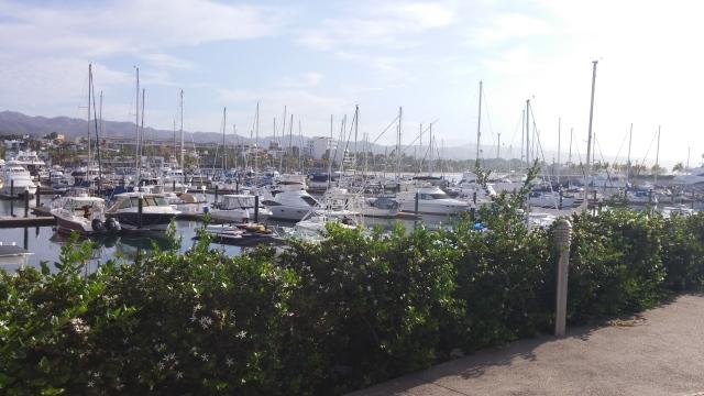 Marina de la Cruz