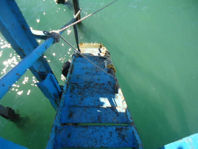The ladder to the dock